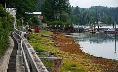 Coal_harbour